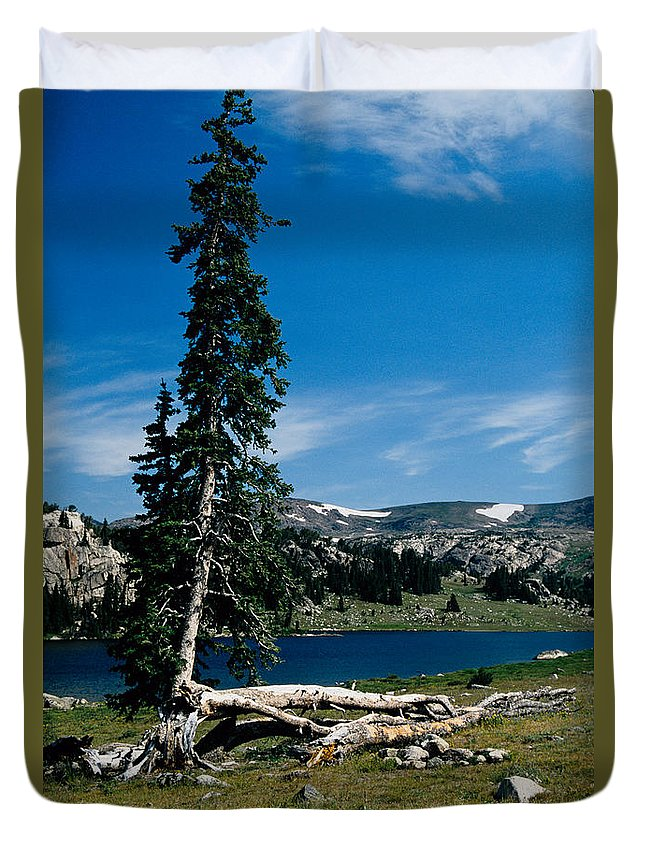 Mountains Duvet Cover featuring the photograph Lone Tree At Pass by Kathy McClure