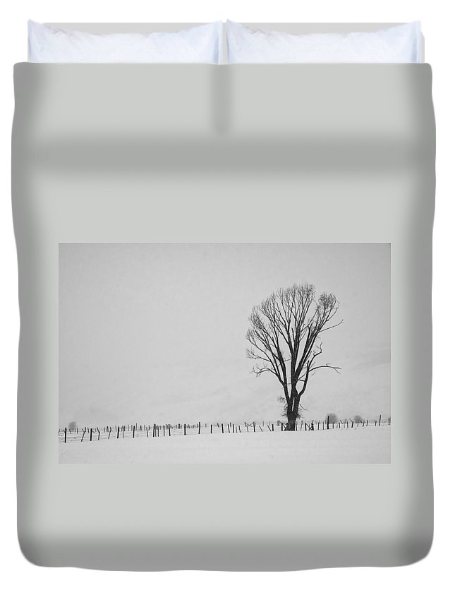 Tree Duvet Cover featuring the photograph Lone Tree by Priscilla Burgers