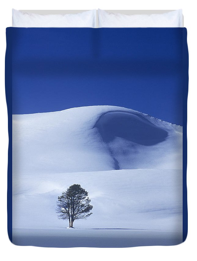 North America Duvet Cover featuring the photograph Lonely Tree In Winter Yellowstone National Park by Dave Welling