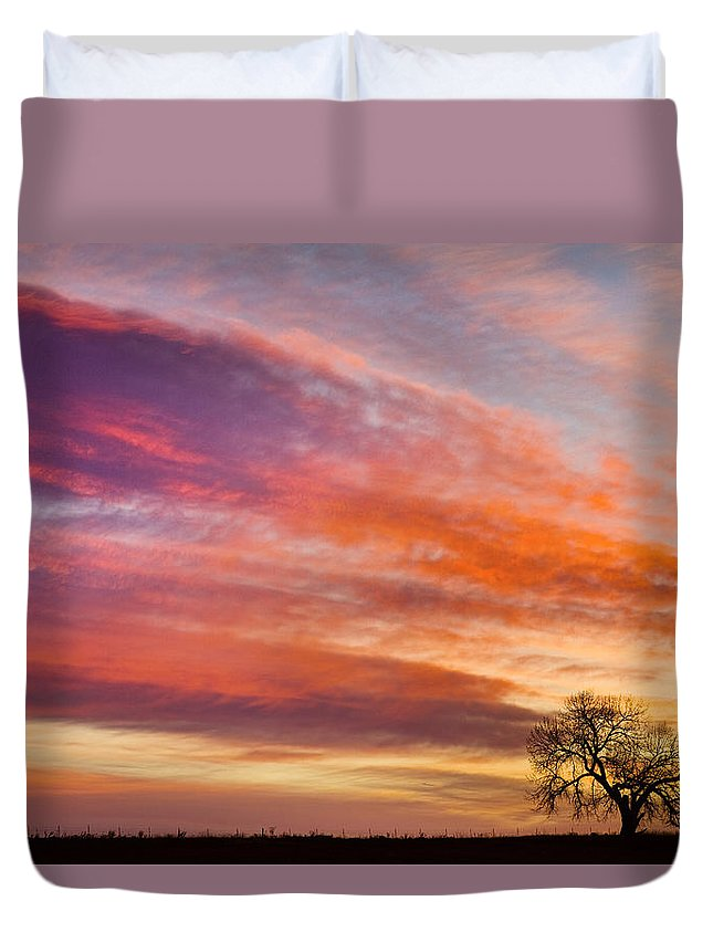 Sunrises Duvet Cover featuring the photograph Lonesome Tree Sunrise by James BO Insogna