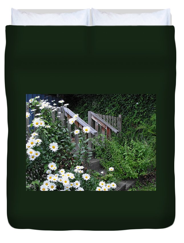 Daisies Duvet Cover featuring the photograph Look After The Daisies by Natalie Ortiz