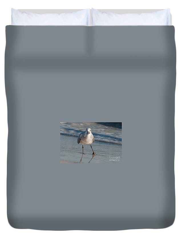Seagull Duvet Cover featuring the photograph Look At My Catch by Photos By Cassandra