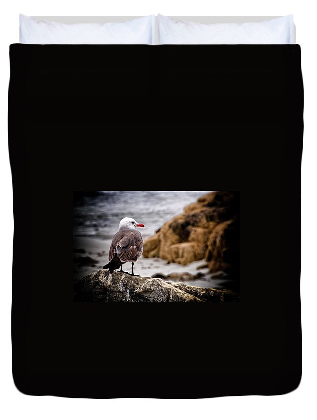 Sea Gull Duvet Cover featuring the photograph Looking For Dinner by Jon Berghoff