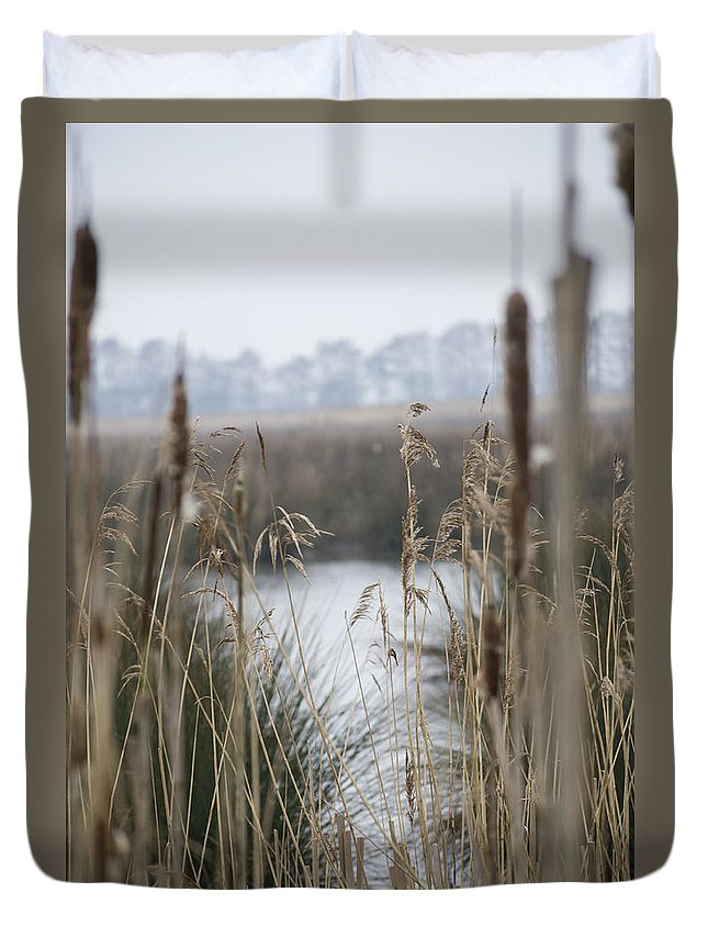 Reeds Duvet Cover featuring the photograph Looking Through The Reeds by Spikey Mouse Photography