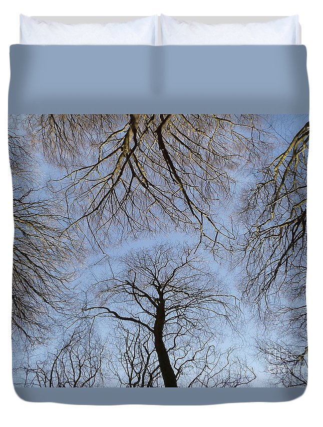 Up Duvet Cover featuring the photograph Looking Up by Vicki Spindler