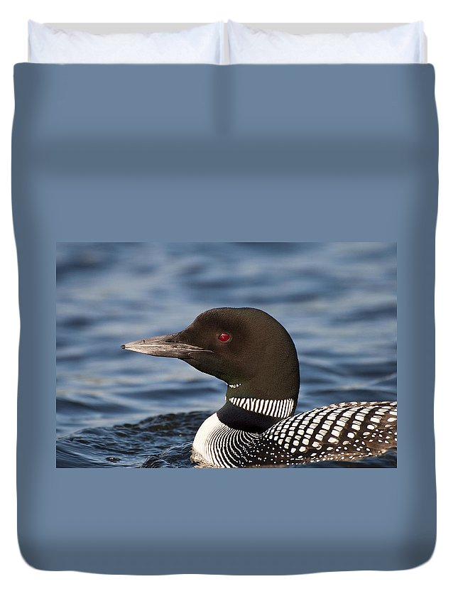 Loon Duvet Cover featuring the photograph Loon by Donna Doherty