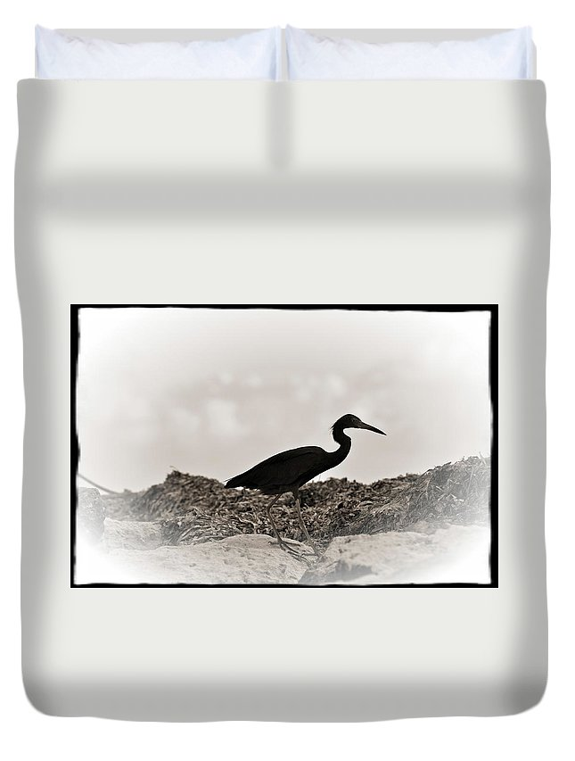 Loon Duvet Cover featuring the photograph Loon by Jes Fritze