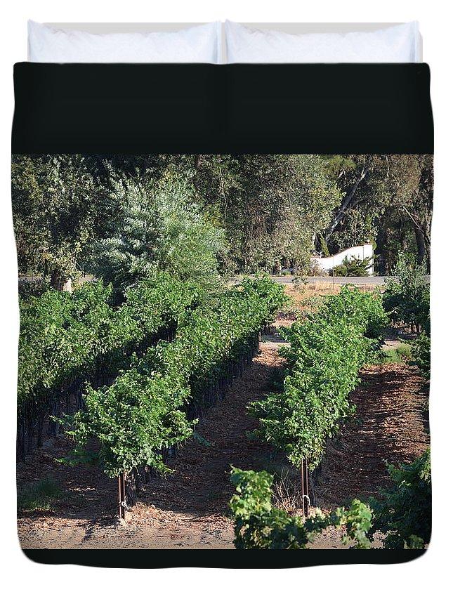 Lorimar Winery Duvet Cover featuring the photograph Lorimar Vines by Steve Scheunemann