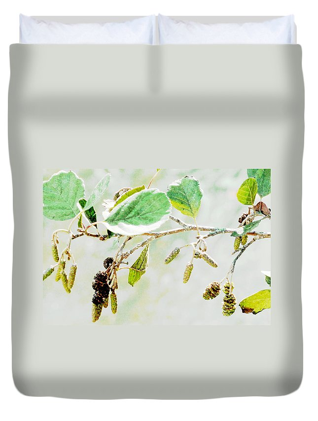 Catkins Duvet Cover featuring the photograph Lost In The Light by Steve Taylor