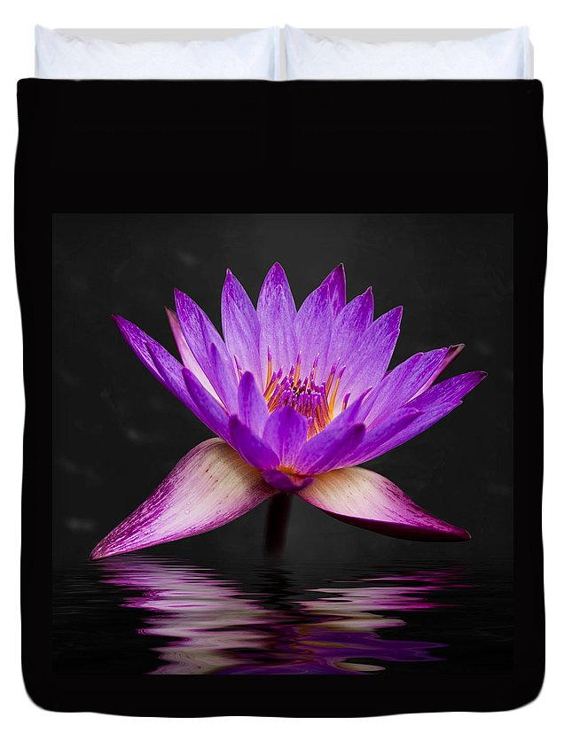 3scape Duvet Cover featuring the photograph Lotus by Adam Romanowicz