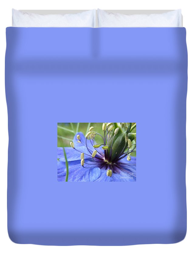 Nigella Duvet Cover featuring the photograph Love-in-a-mist by Rain Shine