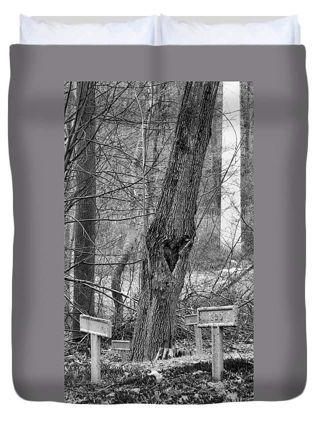 Photography Duvet Cover featuring the photograph Love Is Eternal by Art Dingo