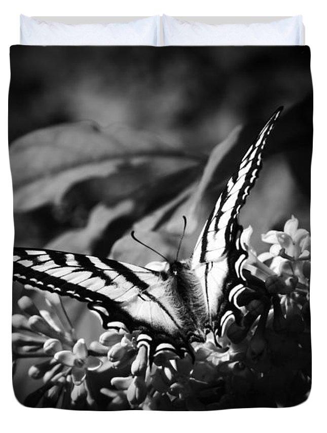 Eclectus Roratus Duvet Covers