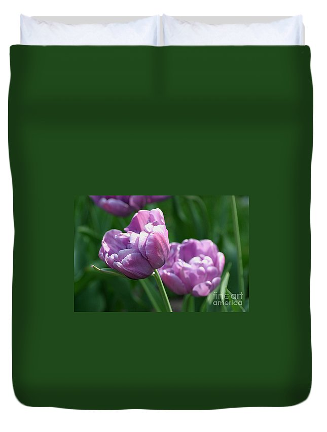 Tulips Duvet Cover featuring the photograph Lovely Lavender by Living Color Photography Lorraine Lynch
