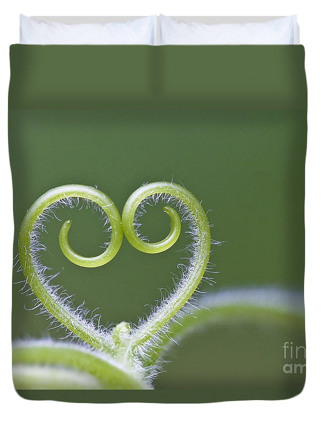 Tendril Duvet Cover featuring the photograph Loving Nature by Maria Ismanah Schulze-Vorberg