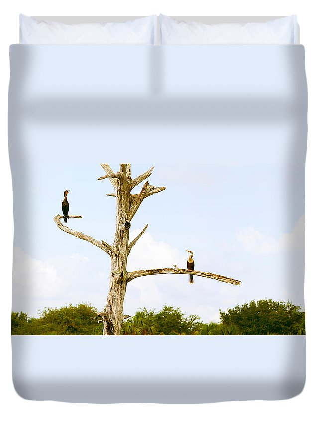 Photography Duvet Cover featuring the photograph Low Angle View Of Cormorants by Panoramic Images