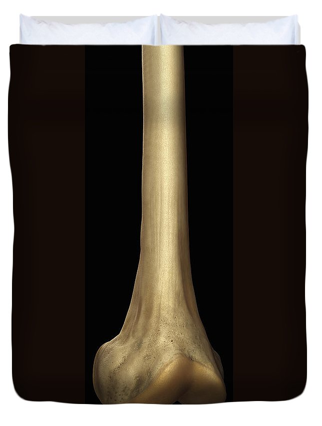 Digitally Generated Image Duvet Cover featuring the photograph Lower Part Of The Femur Bone by Science Picture Co