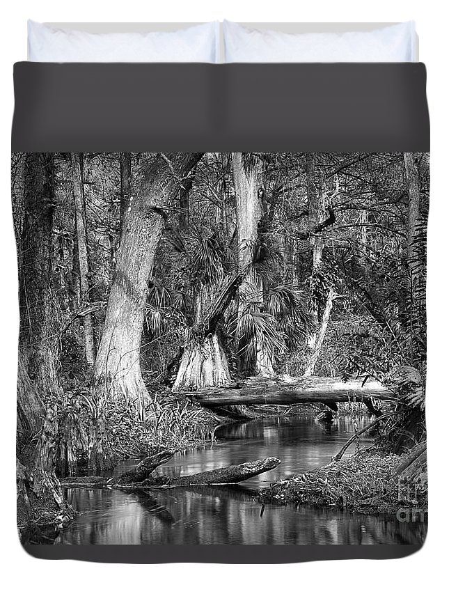 Loxahatchee River Duvet Cover featuring the photograph Loxahatchee Black And White by Bruce Bain