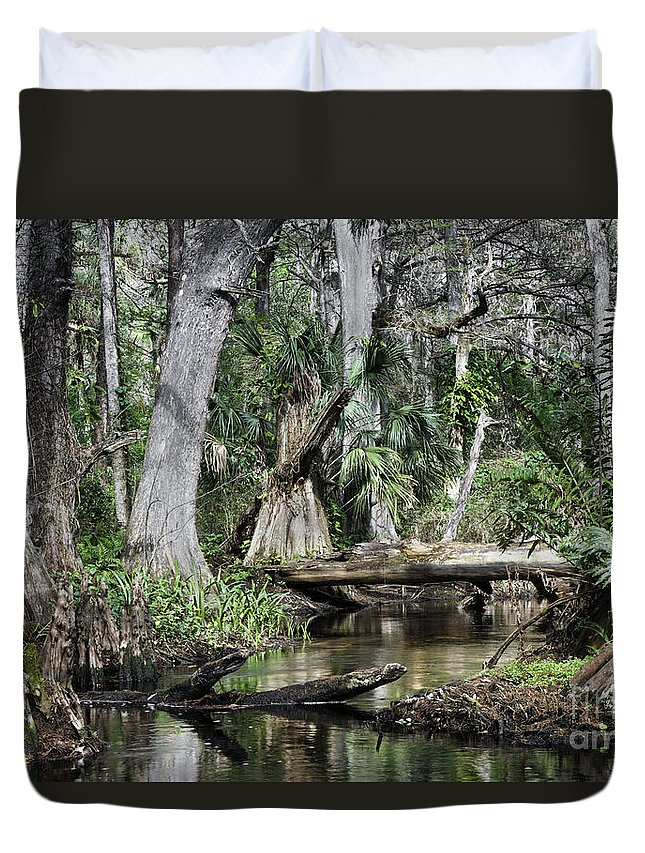 Loxahatchee River Duvet Cover featuring the photograph Loxahatchee by Bruce Bain