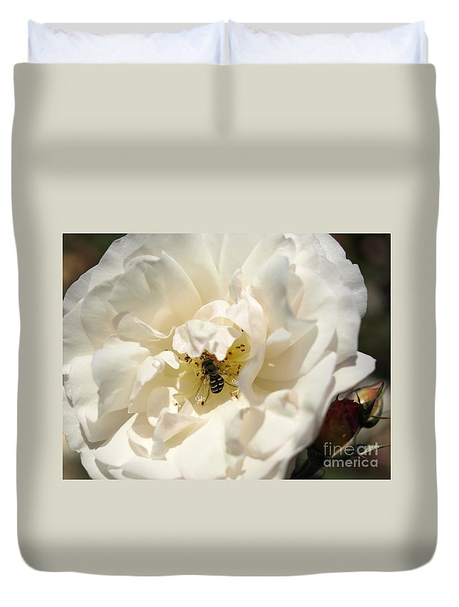 White Rose Duvet Cover featuring the photograph Lunch by Jacklyn Duryea Fraizer