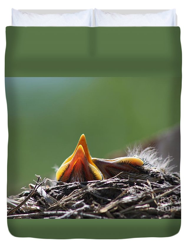 Bird Duvet Cover featuring the photograph Lunch Time by Robert D Brozek