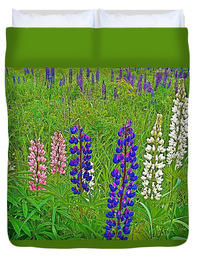 Lupine On Campobello Island Duvet Cover featuring the photograph Lupine On Campobello Island-nb by Ruth Hager