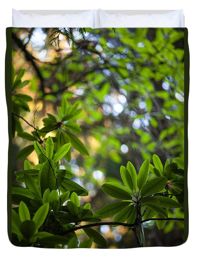 Rhododendron Duvet Cover featuring the photograph Lush Rhododendron Forest by Mike Reid