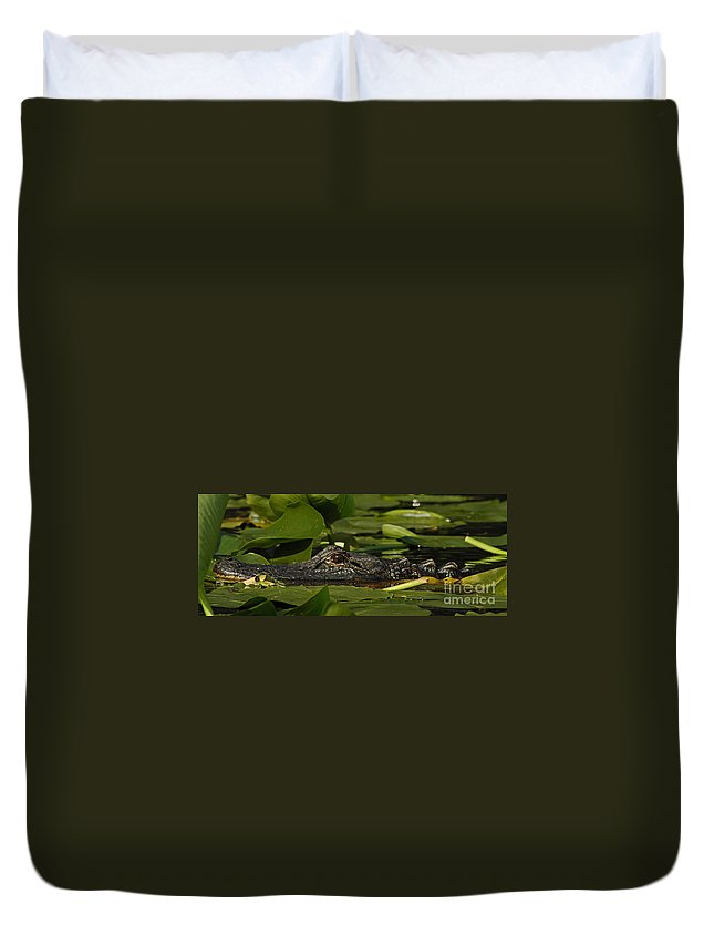 Alligator Duvet Cover featuring the photograph Lying In Wait by Vivian Christopher