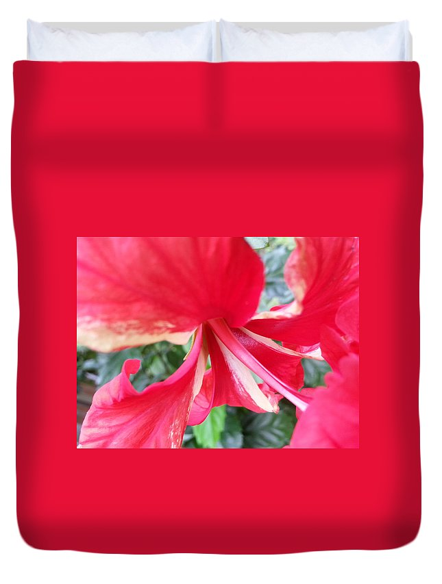 Macro Duvet Cover featuring the photograph Macro Beauty by Fortunate Findings Shirley Dickerson