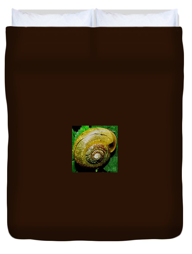 Macro Snail Shell Natural Spiral In Nature North American Terrestrial Gastropods North American Land Snail Landsnails Forest Creatures Woodland Creatures Spiral Shell Shellscape Natural Design Duvet Cover featuring the photograph Macro Snail Shell by Joshua Bales
