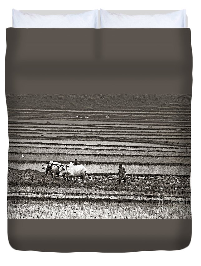 Paddyfield Duvet Cover featuring the photograph Madagascan Paddyfield by Liz Leyden