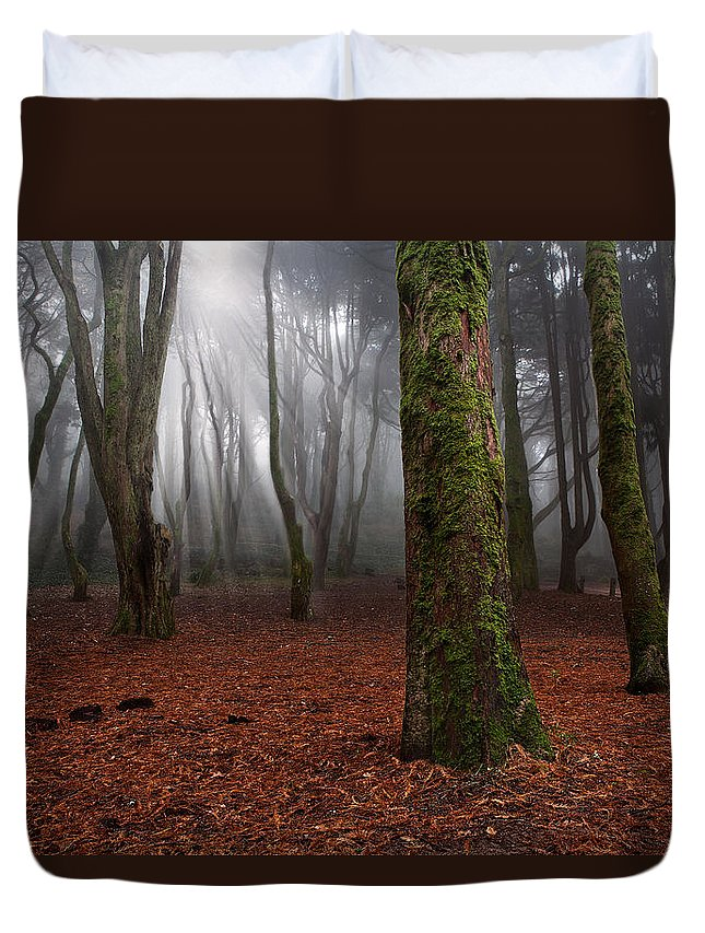 Light Duvet Cover featuring the photograph Magic Light by Jorge Maia