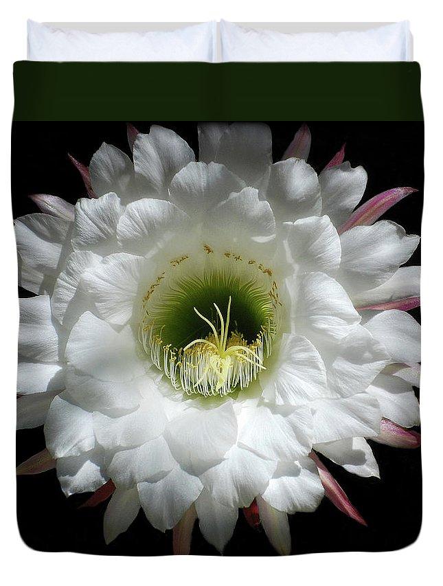 Arizona Duvet Cover featuring the photograph Magic Of The Night by Saija Lehtonen