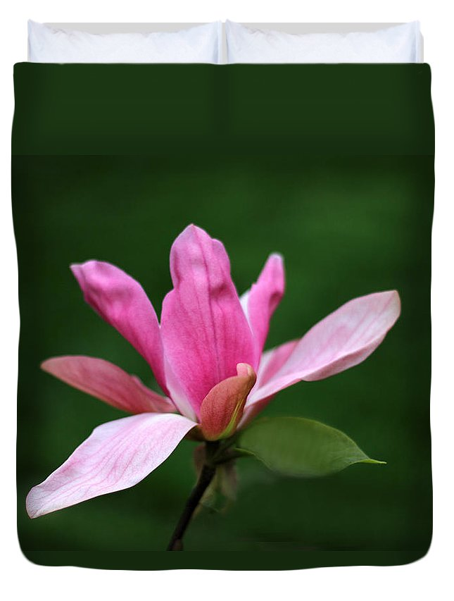 Flowers Duvet Cover featuring the photograph Magnolia by Jessica Jenney
