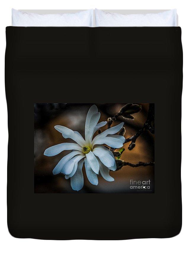Magnolia Duvet Cover featuring the photograph Magnolia Tree Blossum by Grace Grogan