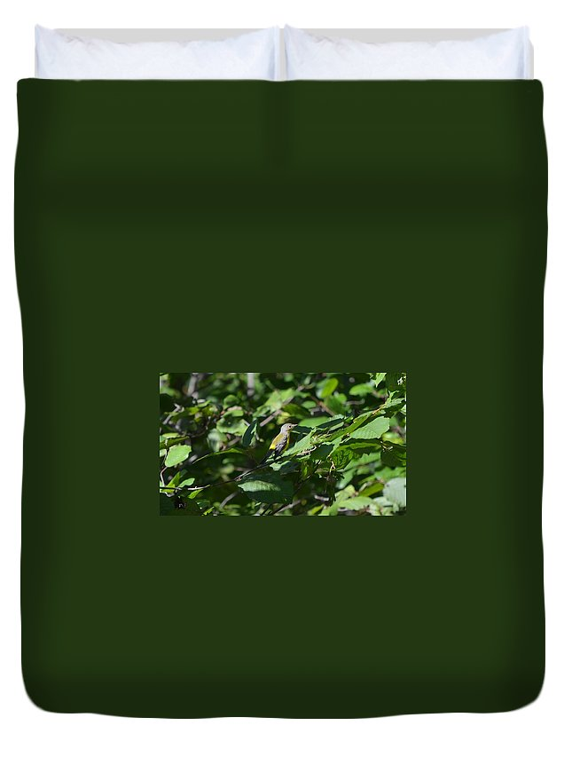 Nature Duvet Cover featuring the photograph Magnolia Warbler by James Petersen