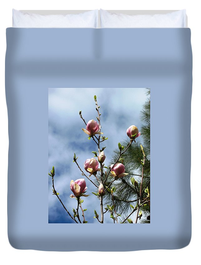Magnolias Duvet Cover featuring the photograph Magnolias In Bud by Louise Adams