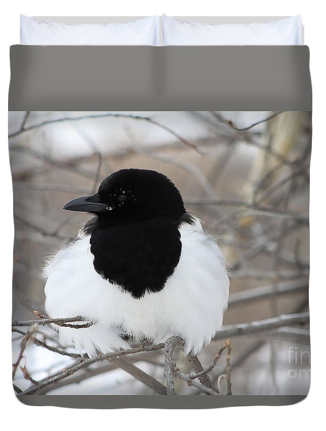 Bird Duvet Cover featuring the photograph Magpie Profile by Alyce Taylor