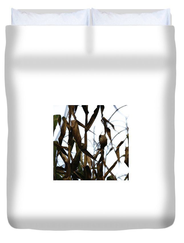 Maize Duvet Cover featuring the photograph Maize by Linda Shafer