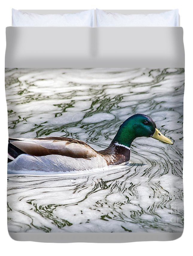 Anas Platyrhynchos Duvet Cover featuring the photograph Mallard In Froth by Kate Brown