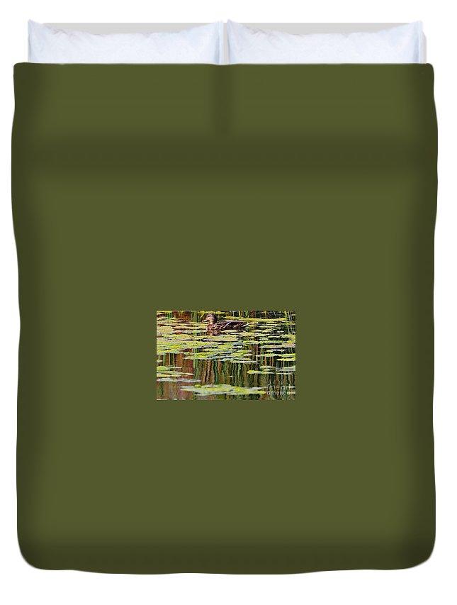 Duck Duvet Cover featuring the photograph Mallard Pond by Elizabeth Winter