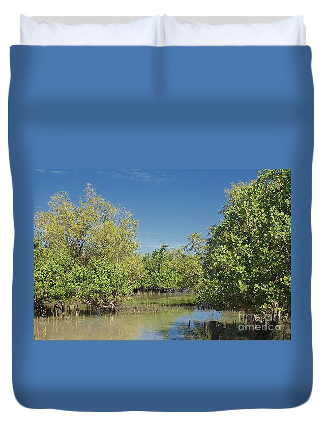 Africa Duvet Cover featuring the photograph mangroves in Madagascar 2 by Rudi Prott