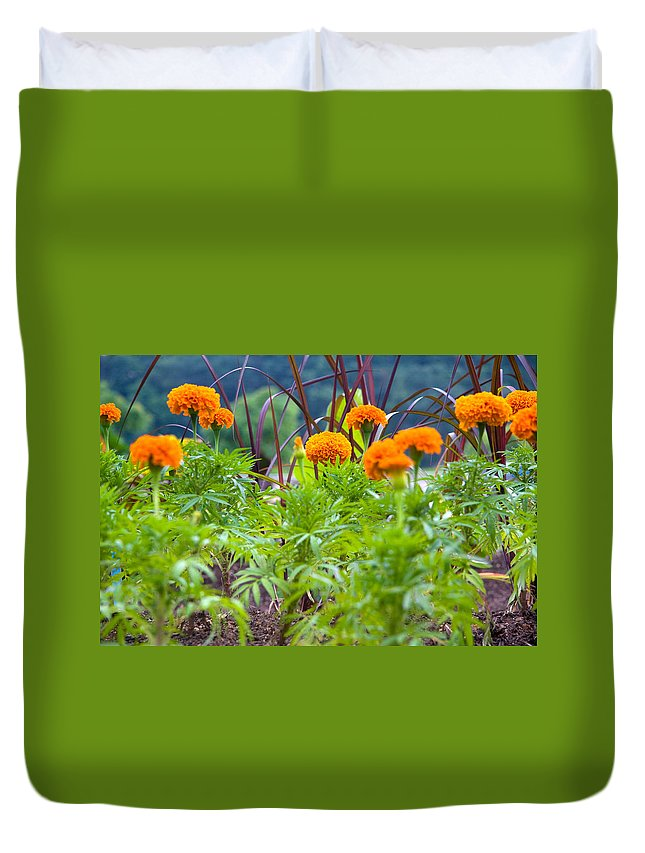 Marigolds Duvet Cover featuring the photograph Marigolds by Melinda Fawver