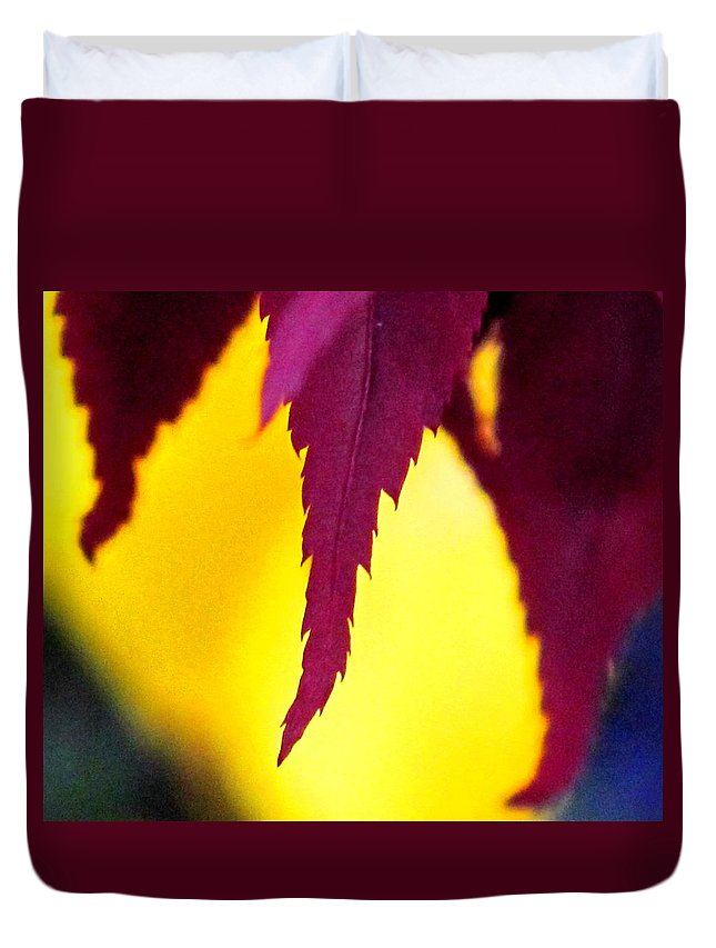 Maroon Duvet Cover featuring the photograph Maroon And Yellow by Ian MacDonald