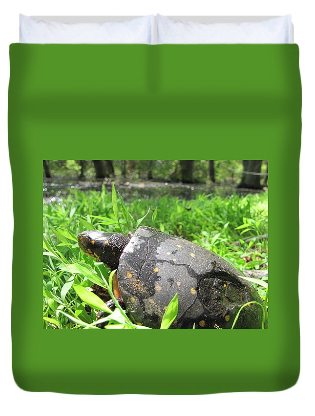 Maryland Spotted Turtle Images Endangered Species Spotted Turtle Photograph Prints Spotted Turtle Pictures Maryland Reptile Images Turtles Of Maryland Rare Turtle Images Rare Habitat Biodiversity Nature Duvet Cover featuring the photograph Maryland Spotted Turtle by Joshua Bales