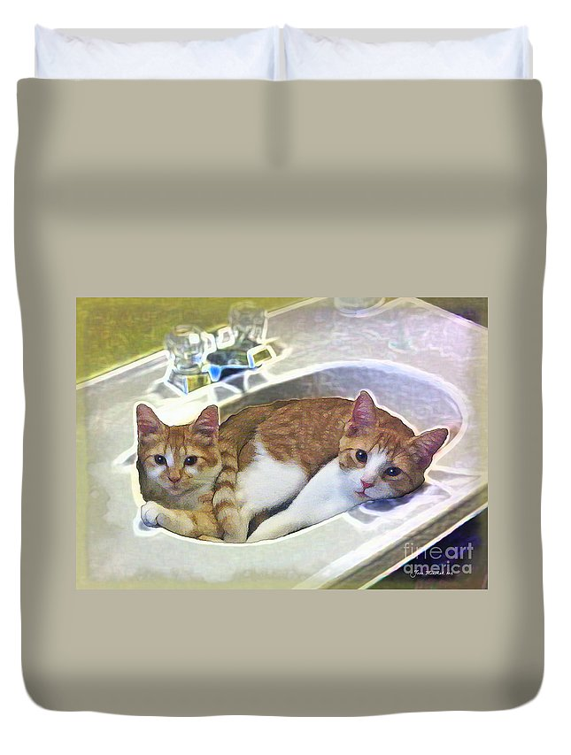 Cats Duvet Cover featuring the photograph Mary's Cats by Joan Minchak