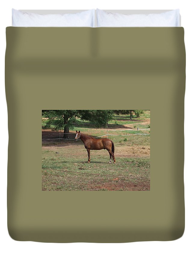 Horse Duvet Cover featuring the photograph Maverick by Lisa Wormell