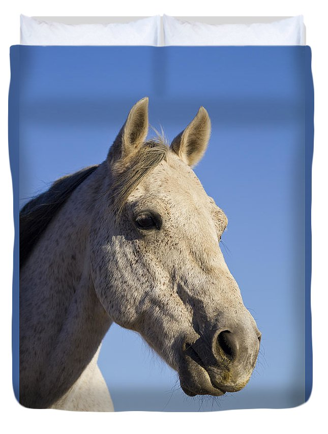 Mayonnaise Duvet Cover featuring the photograph Mayonnaise by Alycia Christine