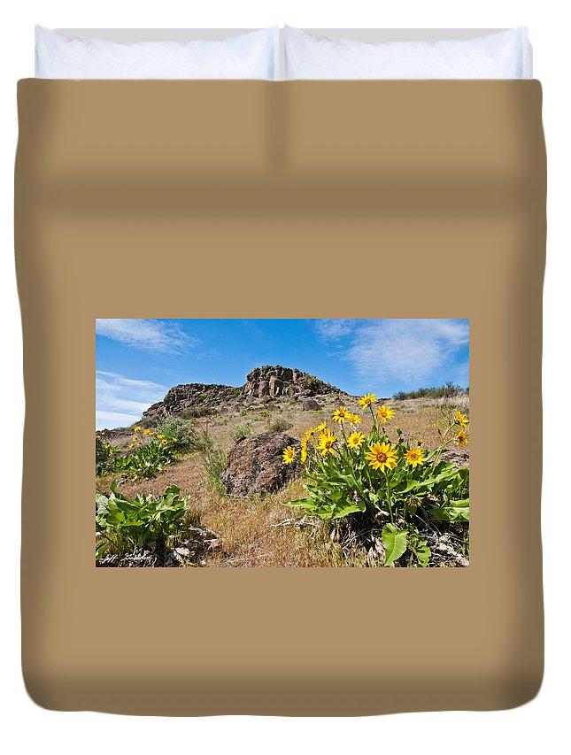 Arrowleaf Balsamroot Duvet Cover featuring the photograph Meadow Of Arrowleaf Balsamroot by Jeff Goulden