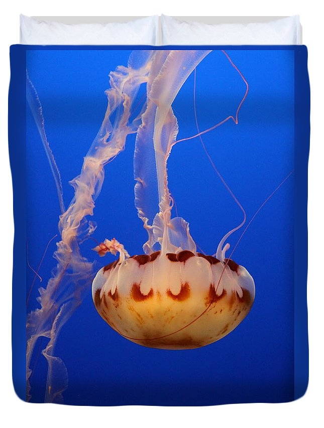 Medusa Jelly Duvet Cover featuring the photograph Medusa Jellyfish by Christiane Schulze Art And Photography